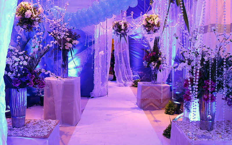 Wedding dreamland